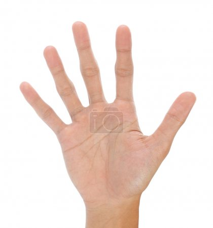Gesture Hand