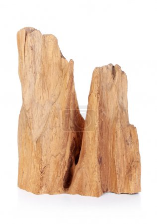 Abstract wooden carving