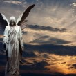 Angel and sunset background abstract...