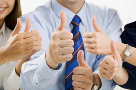 Photo pour Portrait des mains de l'équipe d'affaires montrant un signe d'accord - image libre de droit