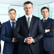 Group portrait of a professional business team loo...
